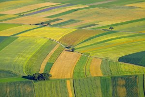 agricultural lawyer near wichita ks